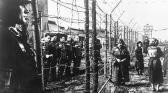 Hitler et l'Allemagne : une attraction fatale