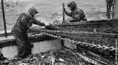 Vents contraires une histoire de la pêche française