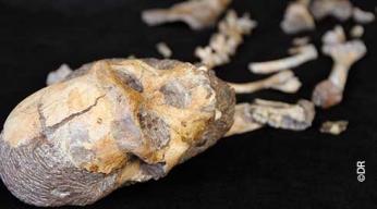 Le garçon qui avait 2 millions d'années