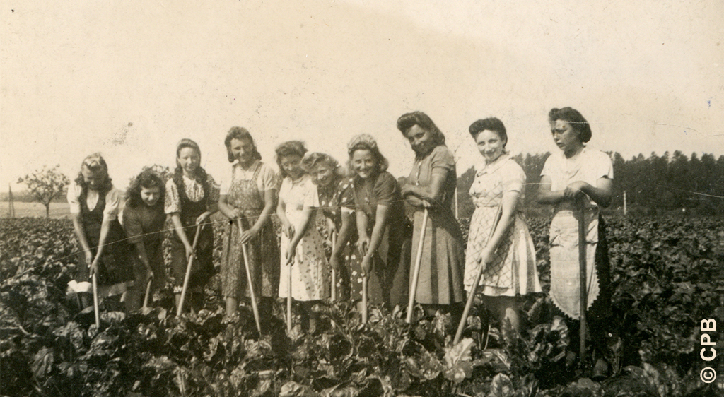 Les juifs de la zone interdite 1941-1944
